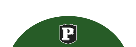 psd shield logo